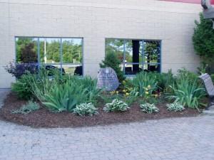 Alma's Garden in Ancaster